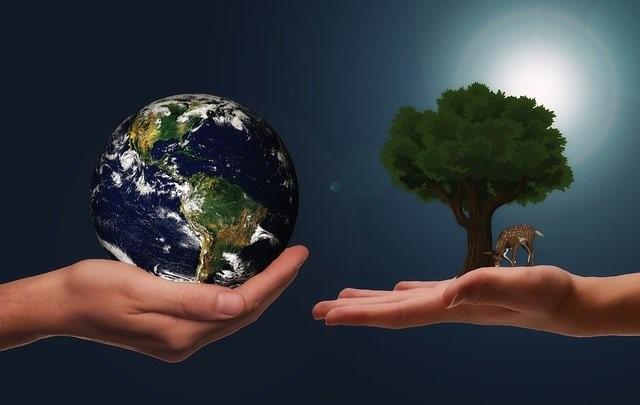 トイレットペーパー節約と地球環境保護